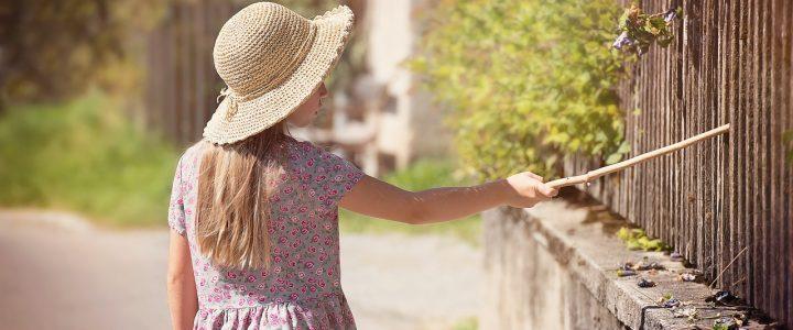 Ogrodzenie domu – dlaczego warto?